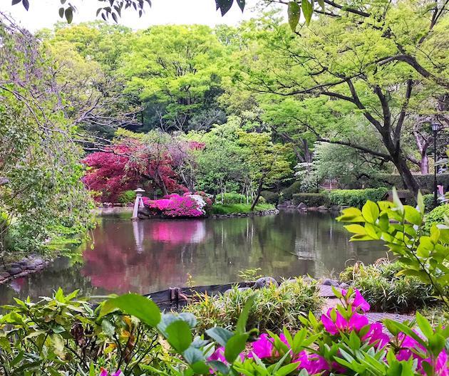 有栖川宮記念公園の池に映える石灯籠とツツジ